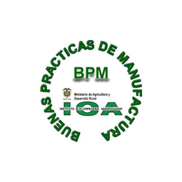 Logo Certificado BPM ICA